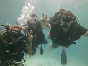 AdSense Flippers Diving Trip